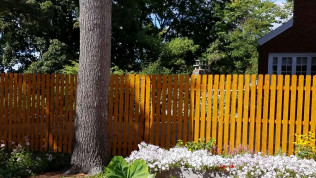 <center>Featured Fence of the Month</center>